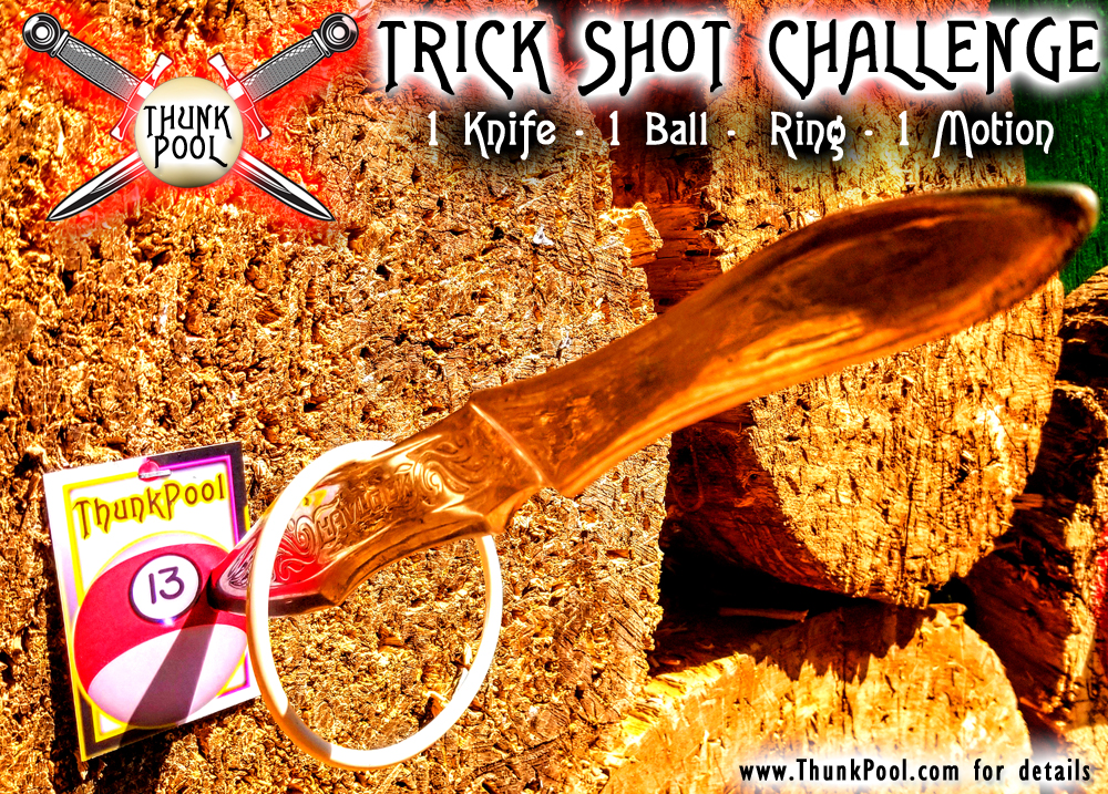 CHALLENGE #255 ~ 1 Ball Trick Shot Challenge! - 1 Knife, 1 Ball, 1 Ring, 1 Motion